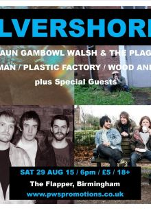 Silvershores / Spaceman / Shaun Gambowl Walsh & The Plagiarists / Plastic Factory / Wood And Nails + Special Guests